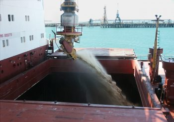 Loading Australian raw sugar for export