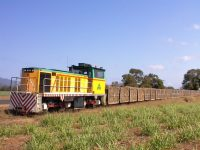 Cane train on route to a sugar mill in Queensland