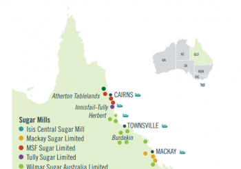 Sugar Industry Facts